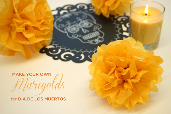 make-your-own-marigolds